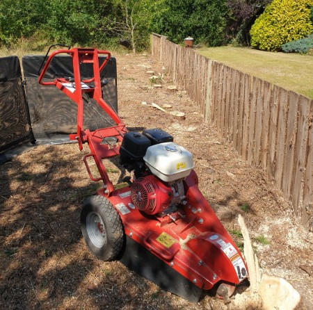 Tree Surgeon Stump Grinding